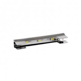 Klips LED 3 pkt. zielony luz